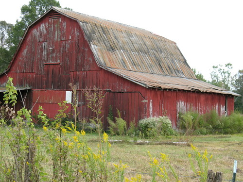 The-Old-Red-Barn.jpg